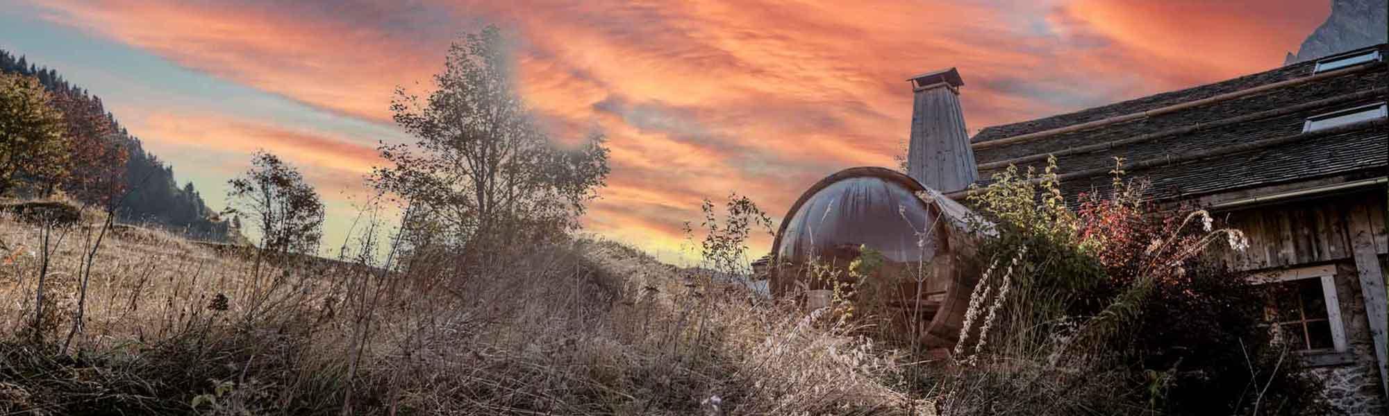 Sauna Sur Mesure Exterieur Design Bois Suisse